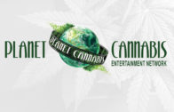 Planet Cannabis Entertainment Network