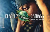 Network – Planet Cannabis Music