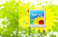 TV Series – Eye On Gardening