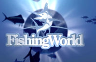 TV Series – Fishing World
