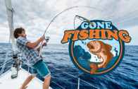 Network – Gone Fishing
