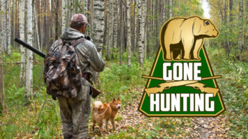 Network – Gone Hunting